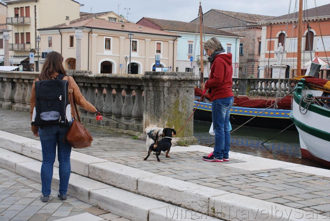 Viajar con perro a Cesenatico