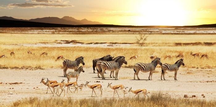 Memorias de Africa - Mindful Trave