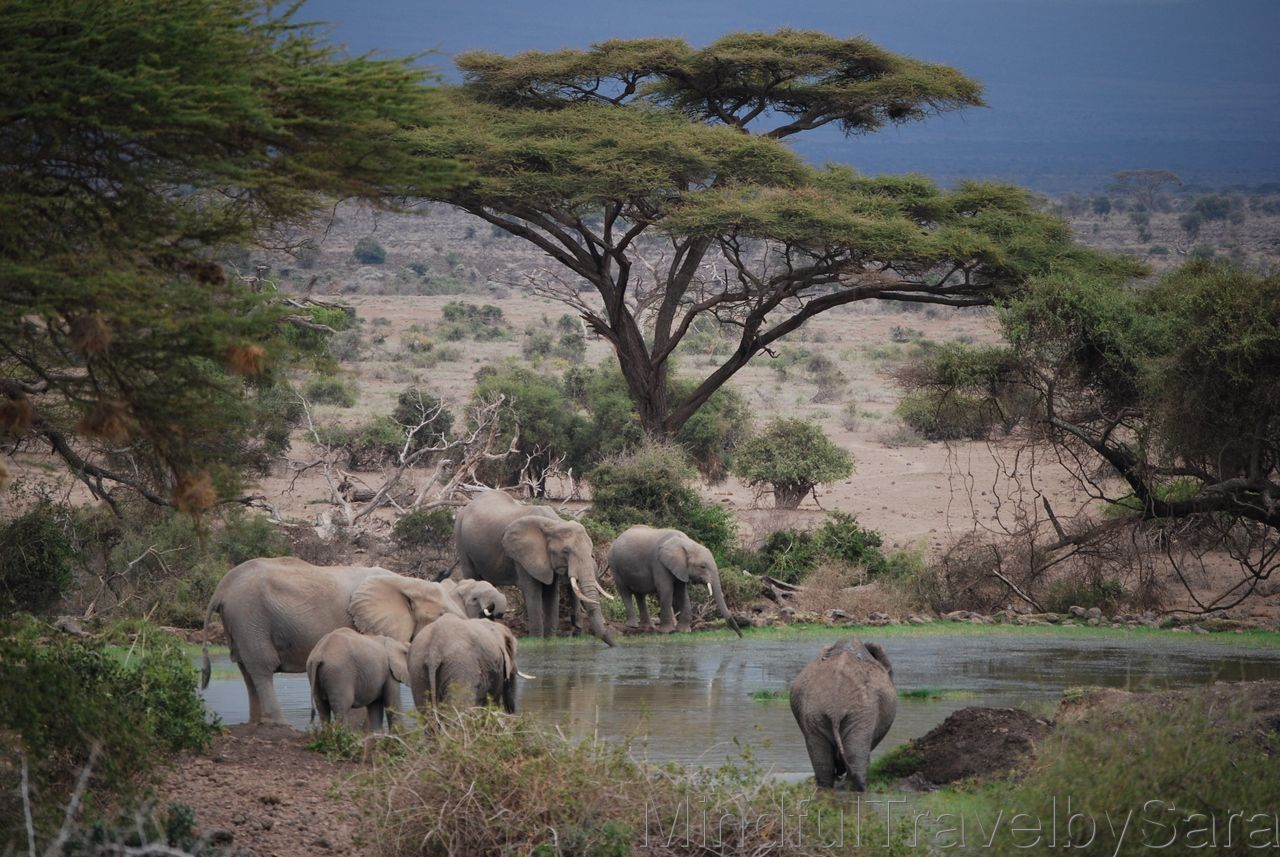 viajar kenia