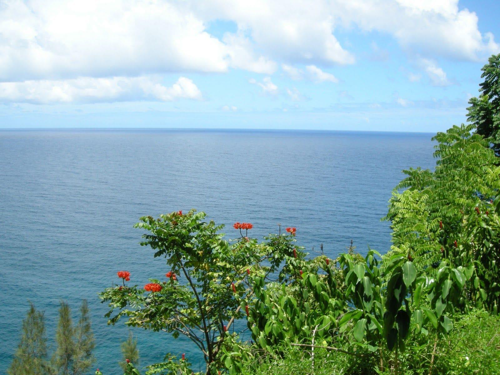 informacion para viajar a Hawai