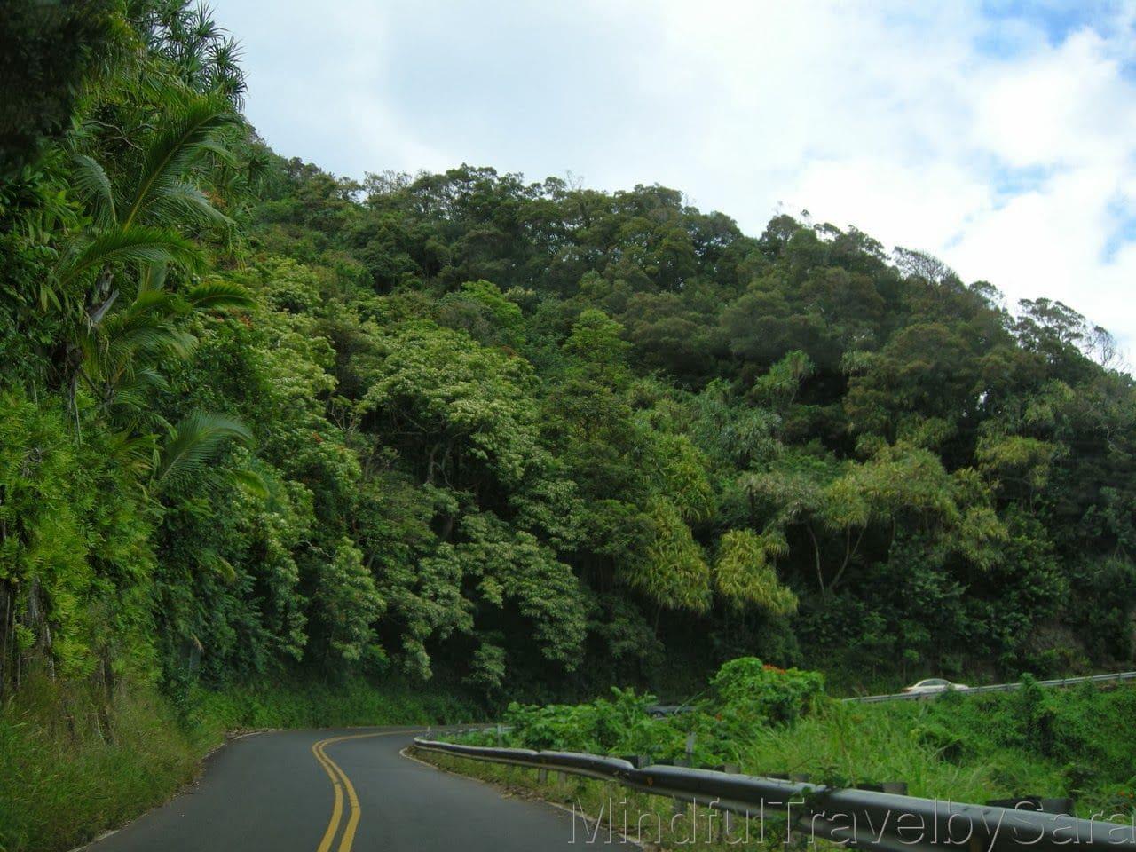 Que visitar en Maui