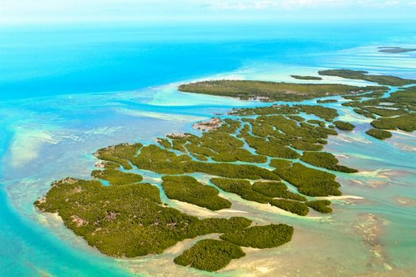 Cayos de Florida