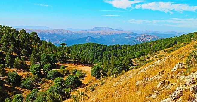 Provincia-de-Albacete