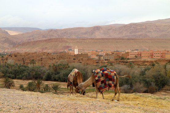 visitar marruecos