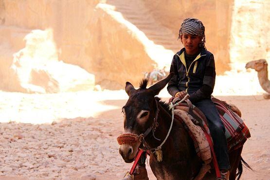 que hacer en jordania