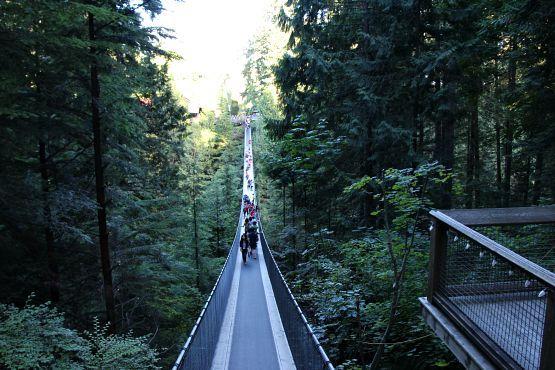 Puente Suspendido de Capilano Vancouver
