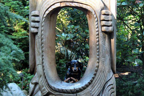 Viajar con perro a Vancouver