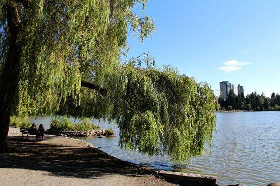 Ciudad de Vancouver Parque Stanley