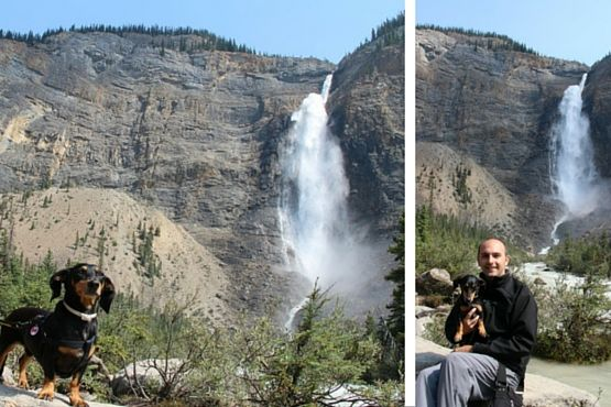 Viajar con Perro a Canadá Cascada Takakkaw