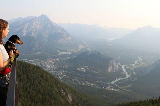 Viajar con Perro a Canadá Vistas Banff