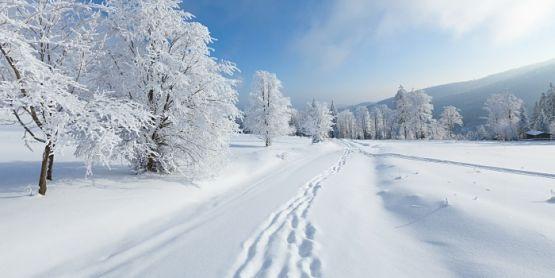 estado de las pistas de esquí