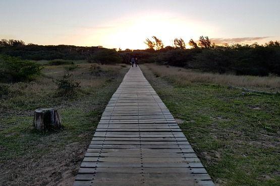 Paseo Estuario Santa Lucia