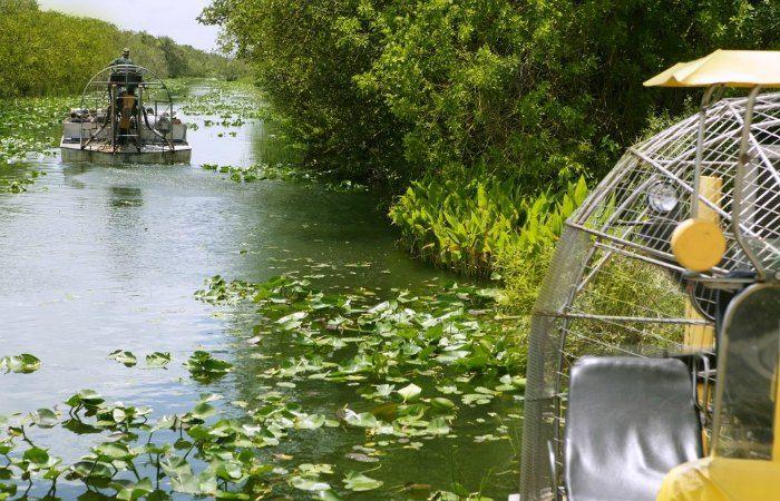 excursiones a los everglades desde miami