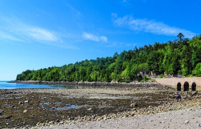 american national parks_Acadia National Park