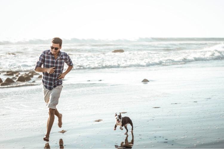 vacaciones con perro en la playa