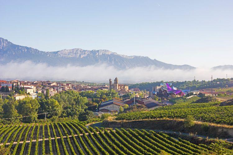La Rioja Enoturismo en otoño