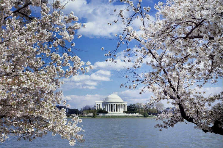 spring break destinations for families in the US