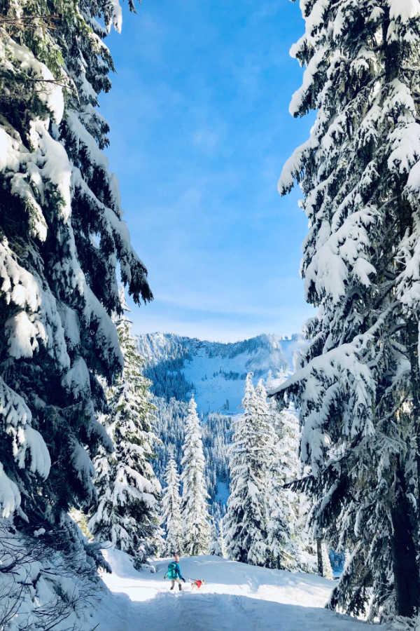 Unforgettable Winter Destinations in the US