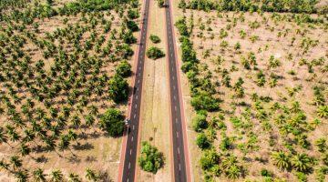 Cómo viajar a México desde Estados Unidos en coche