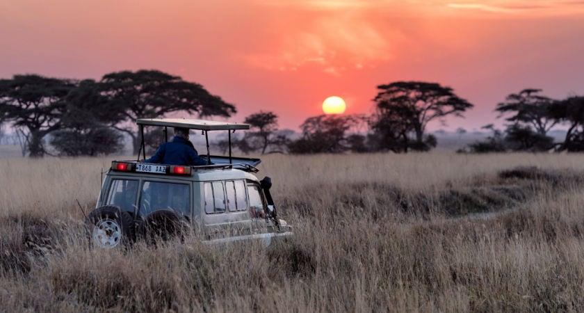 Cuáles son los mejores safaris de África