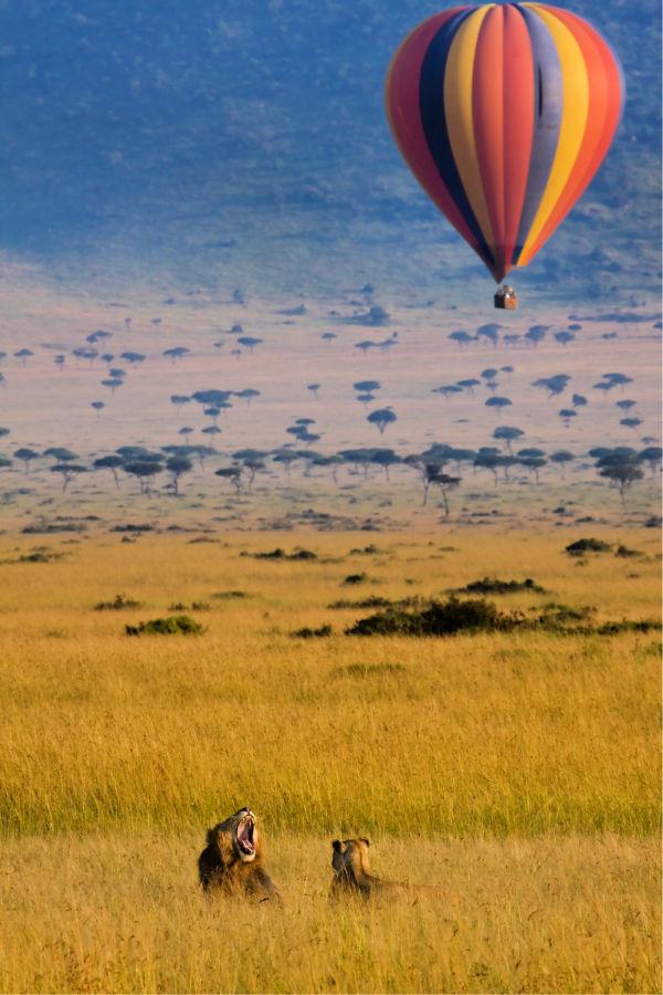 Mejores safaris del mundo