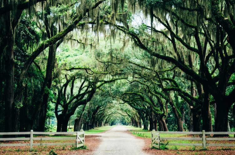 Savannah_Best Affordable Weekend Getaways